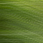 Das Bild ist abstrakt mit verschiedenen Grüntönen, man kann feine Linien aber kein klares Muster erkennen.