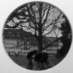 Eine kreisrunde Spiegelung von mir mit Kamera, im Hintergrund steht ein Baum und einige Häuser.